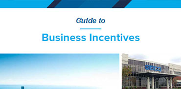 Incentives Guide